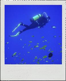 Scuba Diver title=