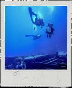 Scuba Divers title=